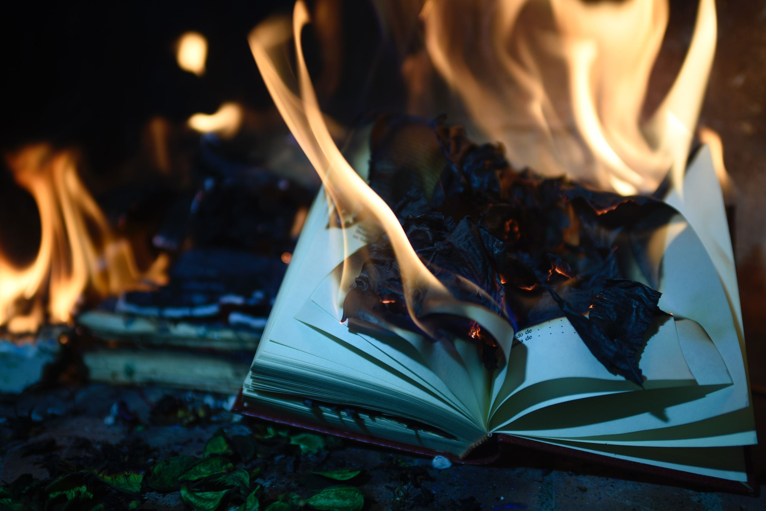 Book being burned